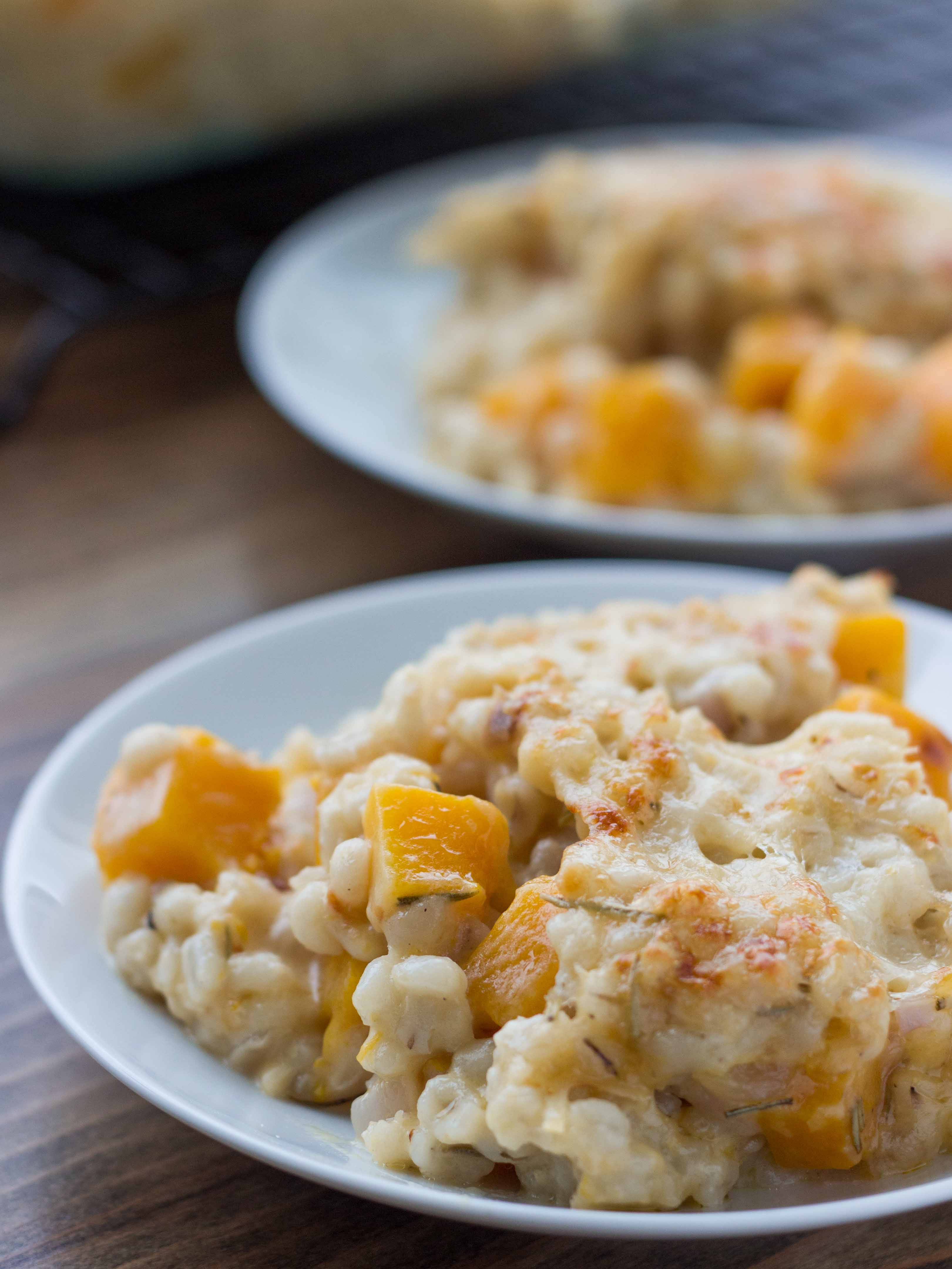 Butternut Squash Barley and Cheddar Gratin | Veggie and the Beast